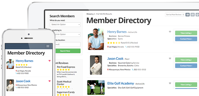 Top membership website theme
