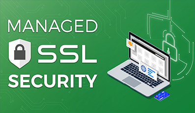 SSL Secure Website - Website Directory Theme