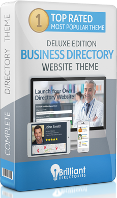 Business Directory Website Theme