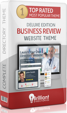 Business Review Directory Website Theme