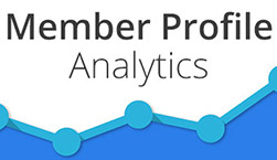 Member Profile Analytics - Website Directory Theme