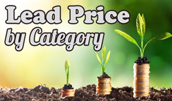 Lead Price by Category - Website Directory Theme