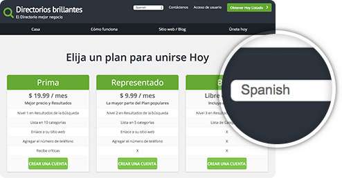 Google Website Translator Spanish