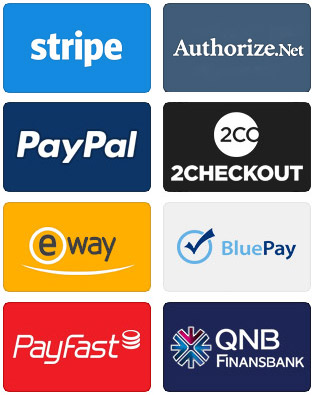 website payment gateway