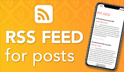 RSS Feed for Posts - Website Directory Theme